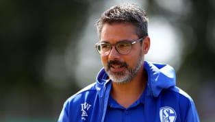Vier Pflichtspiele liegen bereits hinter David Wagner als neuer Trainer von Schalke 04. Unabhängig von Ergebnissen sind erste, wichtige Schritte gemacht...