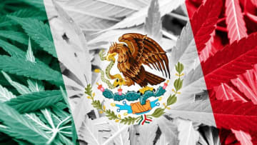 As its Senate goes back into session, Mexico's lawmakers finally seem ready to approve adult use cannabis