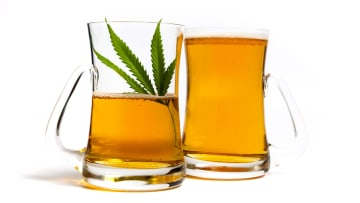 Could hemp beer become your go-to brew? It's worth a try.