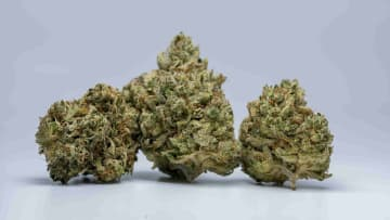 Deadhead OG is recommended for experienced consumers who want to engage in relaxing activities.