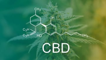 So will CBD get you high or not? We've got the truth.