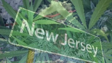 New Jersey voters could approve adult-use cannabis retail sales at the November ballot box