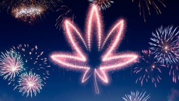 Cannabis News Highlights You May Have Missed for June 29th - July 3rd