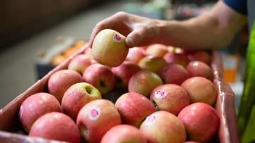 Las frutas son un parte clave de la dieta para el crecimiento sano de los jóvenes
