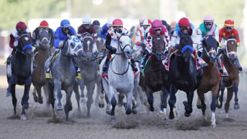 List of horses and odds for the 2021 Preakness Stakes race.