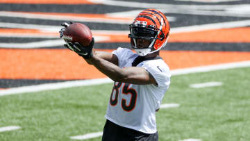 Tee Higgins is expected to be a serious weapon for the Bengals.