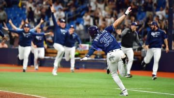 Detroit Tigers vs Tampa Bay Rays prediction and MLB pick straight up for today's game between DET vs TB.