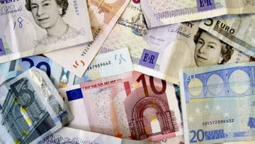 Government Decision Expected On Euro