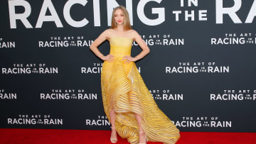 "Premiere Of 20th Century Fox's ""The Art Of Racing In The Rain"" - Arrivals"