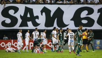 Santos v Palmeiras - Brasileirao Series A 2019