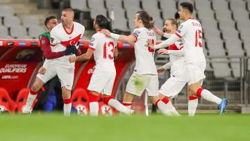 Türkiye'nin Hollanda maçındaki gol sevinci