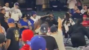 Dodgers and Angels fans brawl in the stands