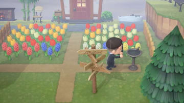 ACNH: How to Get Purple Hyacinths Guide