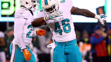 EAST RUTHERFORD, NJ - DECEMBER 17: Neville Hewitt #46 of the Miami Dolphins reacts against the New York Jets during the second half of the game at MetLife Stadium on December 17, 2016 in East Rutherford, New Jersey. (Photo by Al Bello/Getty Images)
