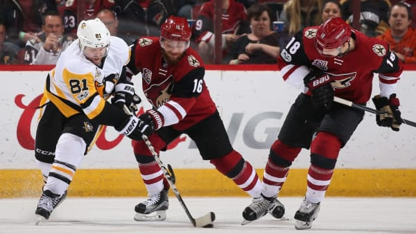 GLENDALE, AZ - FEBRUARY 11:  Phil Kessel #81 of the Pittsburgh Penguins and Max Domi #16 of the Arizona Coyotes battle for the puck during the third period of the NHL game at Gila River Arena on February 11, 2017 in Glendale, Arizona.  The Coyotes defeated the Penguins 4-3 in overtime.  (Photo by Christian Petersen/Getty Images)