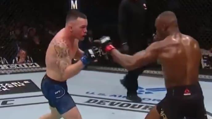 Colby Covington and Kamaru Usman at UFC 245