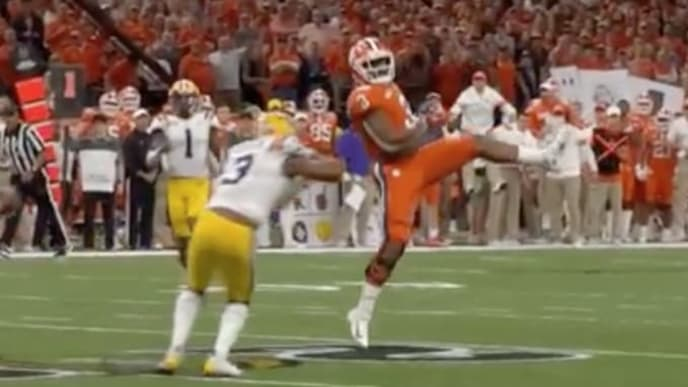 LSU's Jacoby Stevens absolutely walloped Clemson WR Amari Rodgers