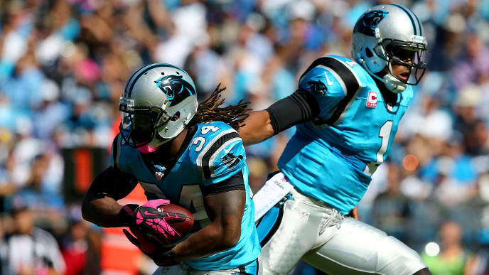 CHARLOTTE, NC - OCTOBER 20:  Cam Newton #1 of the Carolina Panthers and teammate  DeAngelo Williams #34 during their game at Bank of America Stadium on October 20, 2013 in Charlotte, North Carolina.  (Photo by Streeter Lecka/Getty Images)