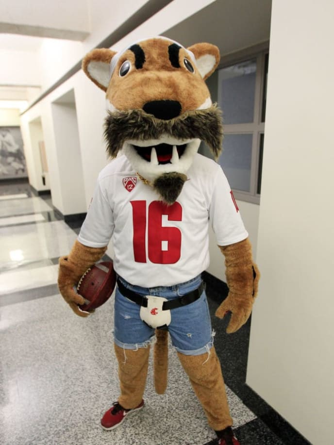 PULLMAN, WASHINGTON - SEPTEMBER 21: Butch the mascot dresses as quarterback Gardner Minshew II of the Jacksonville Jaguars for Minshew's visit prior to the game between the UCLA Bruins and the Washington State Cougars at Martin Stadium on September 21, 2019 in Pullman, Washington. (Photo by William Mancebo/Getty Images)