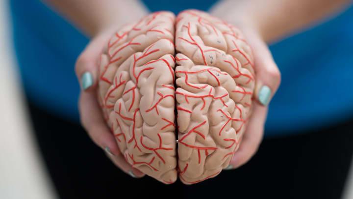 Medical Community Split on how Cannabis Can Alleviate Parkinson's.