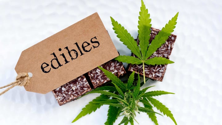 Understanding how cannabis edibles work in your body -- and how long they stay in your system -- is important.