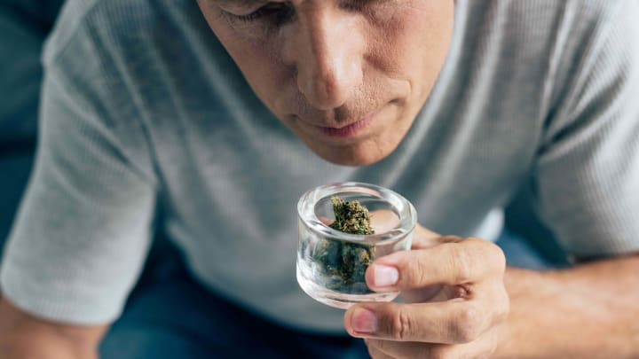 Cannabis 101: How to Get Rid of That Weed Smell
