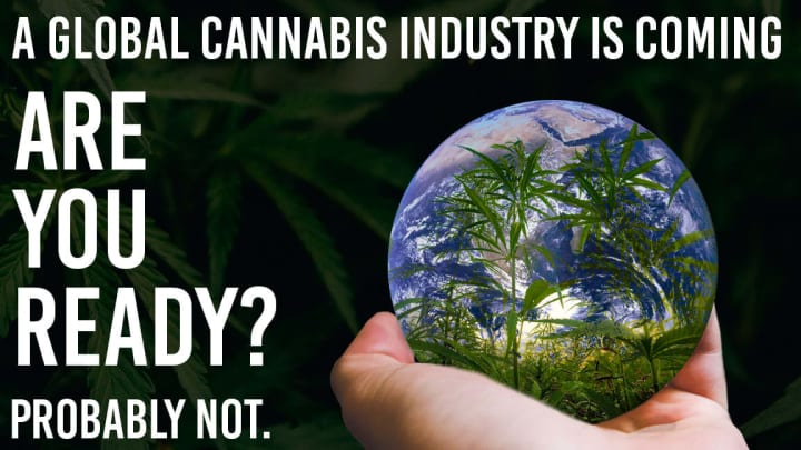 What does a global cannabis industry mean for mainstream cannabis operators?