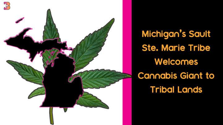 Ste. Sault Marie Tribe Welcomes Cannabis
