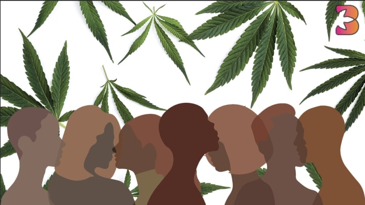 3 Organizations Supporting Social Justice in Cannabis