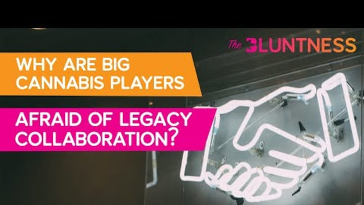 Why Are Big Cannabis Players Afraid of Legacy Collaboration? | The Edge ft Christine & Vlad