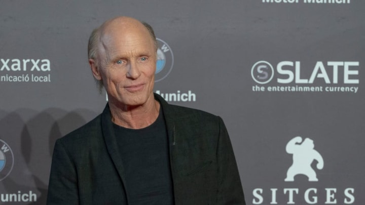SITGES, SPAIN - OCTOBER 13:  Ed Harris poses on the red carpet during the Sitges Film Festival 2018 closing gala held at the Hotel Melia on October 13, 2018 in Sitges, Spain.  (Photo by Robert Marquardt/Getty Images)