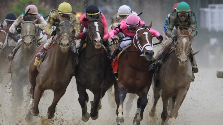 Kentucky derby odds betting line espace forme betting websites