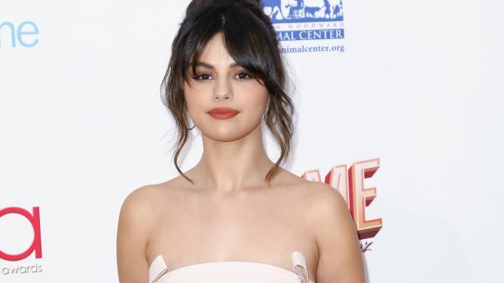 Selena Gomez's Rare Beauty company has pledged to raise $100 million towards mental health services.