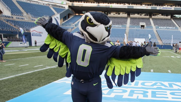 Seattle Seahawks mascot dressed as a player.
