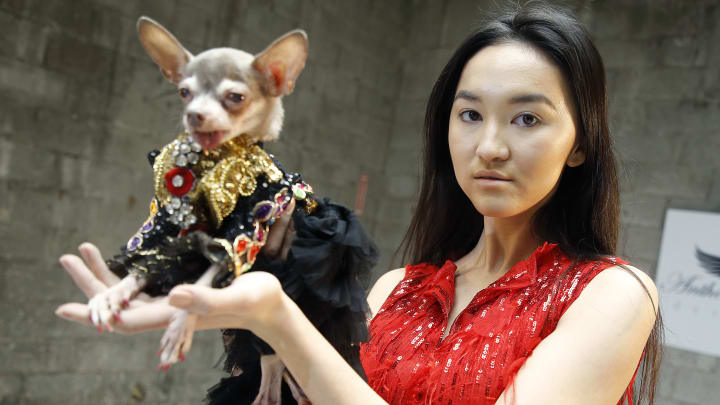 Anthony Rubio's Women's Wear Canine Couture - February 2021 - New York Fashion Week