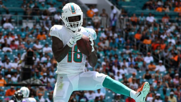 Preston Williams was the Miami Dolphins' leading receiver before getting injured in 2019.