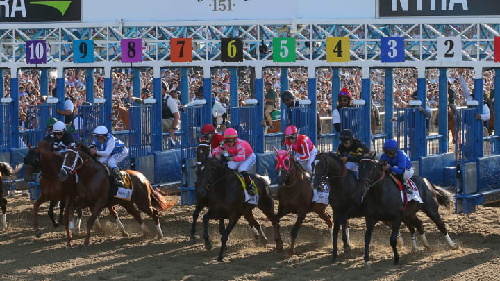 tutorial on horse race betting payouts