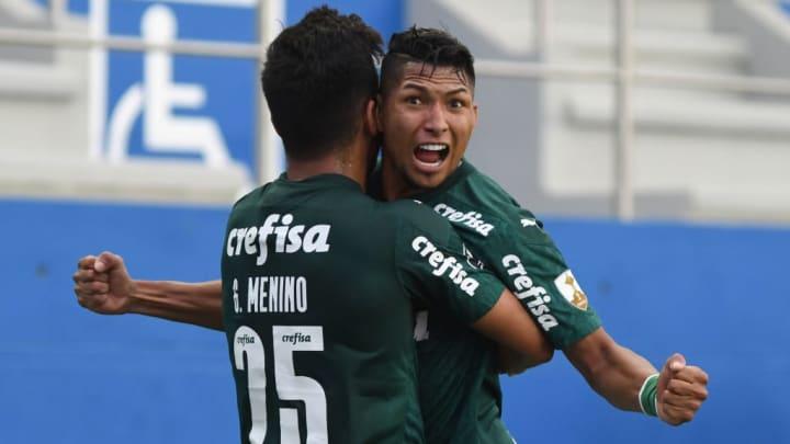 Palmeiras Brasileirão Futebol