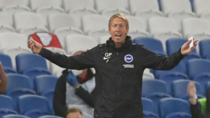 Graham Potter has all-but kept Brighton in the Premier League this season