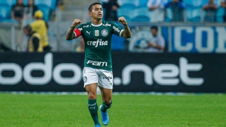 Palmeiras Dudu