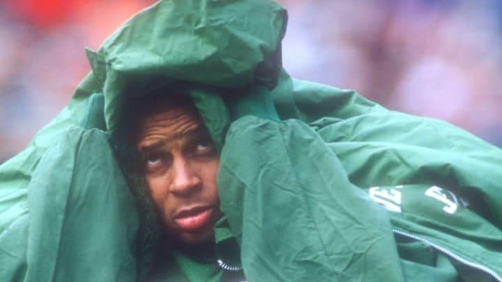 NY Jets, Ronnie Lott