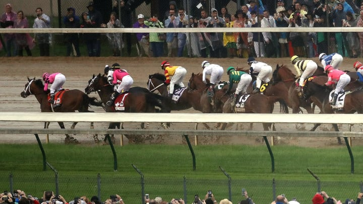 Betting on horse races 101 62021 bitcoins