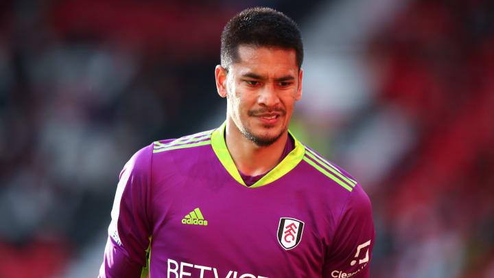 Alphonse Areola a réalisé une belle saison avec Fulham et évoluera en Premier League à nouveau la saison prochaine.
