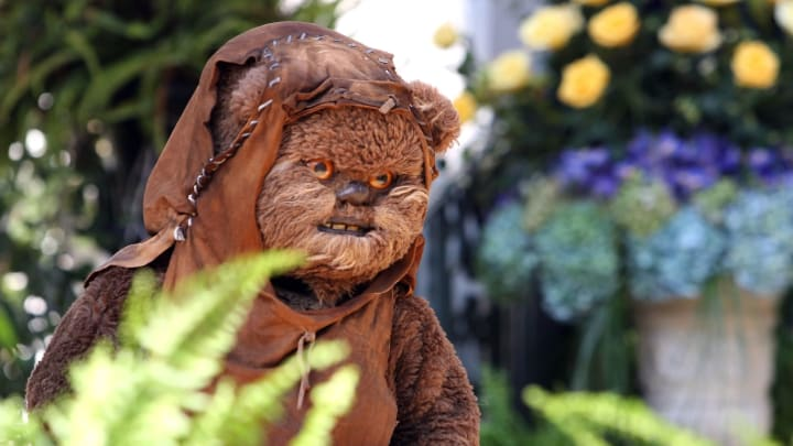 How Ewoks from 'Star Wars' look before their fur is put on is super creepy.