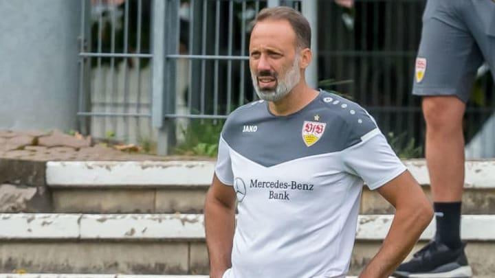 Pellegrino Matarazzo wird den VfB in der Liga halten können.