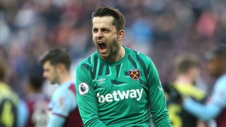 Lukasz Fabianski has previously suffered relegation with Swansea City