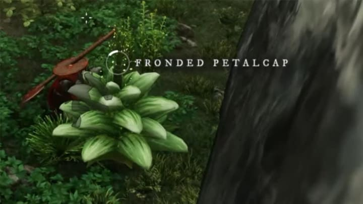 Fronded Petalcaps out in the world, one of the required reagents for completing Weakness of the Ego