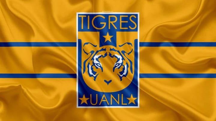 Der Tiger ist das Markenzeichen des mexikanischen Klubs