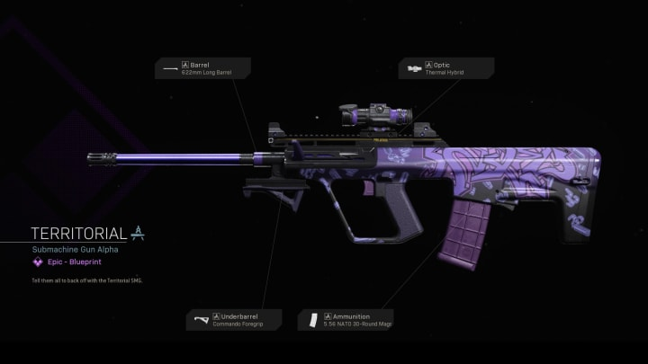 The Territorial SMG in Warzone.
