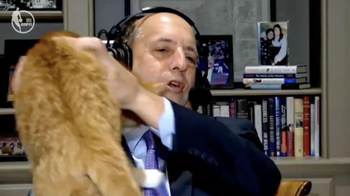 Jeff Van Gundy and his cat.